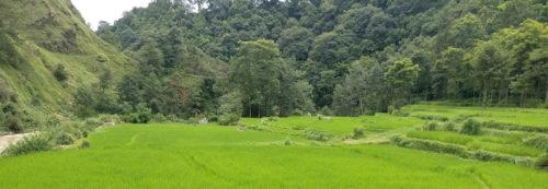 Balthali Village Tour